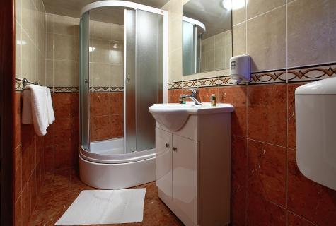 Bathroom with Shower box