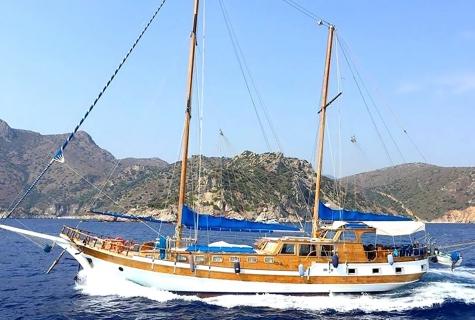Syrolana Cruising