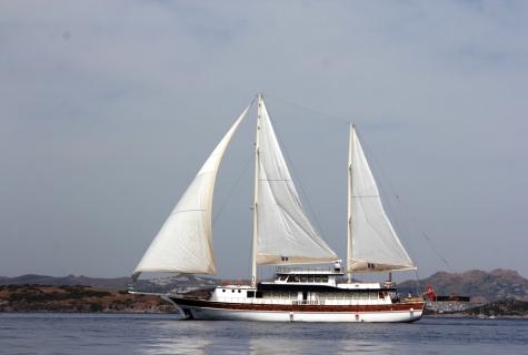 BB sailing.
