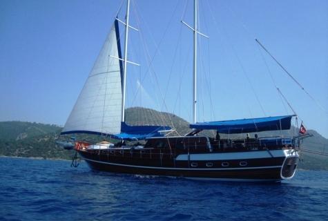 Gokce sail