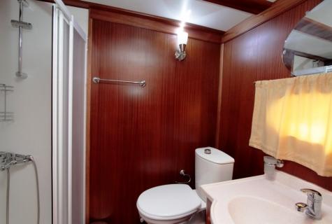 Gokce toilet shower