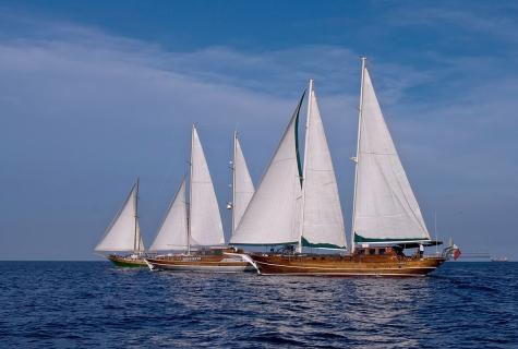 Plaghia Fleet