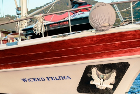 Wicked Felina_11
