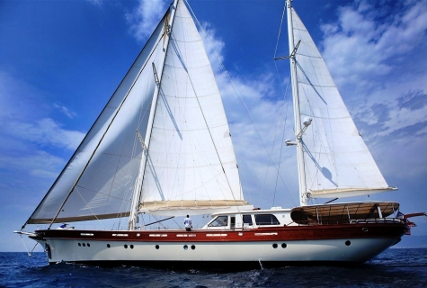 Zelda under sails