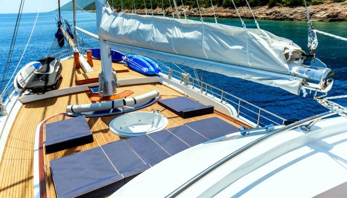 Blue voyage cruise
