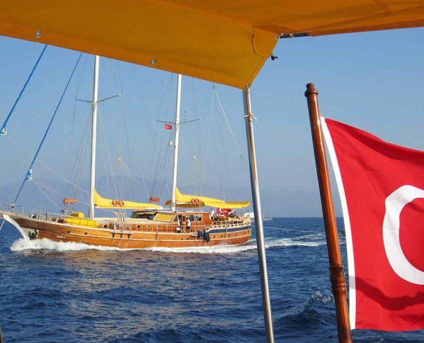FLAS VII Cruising