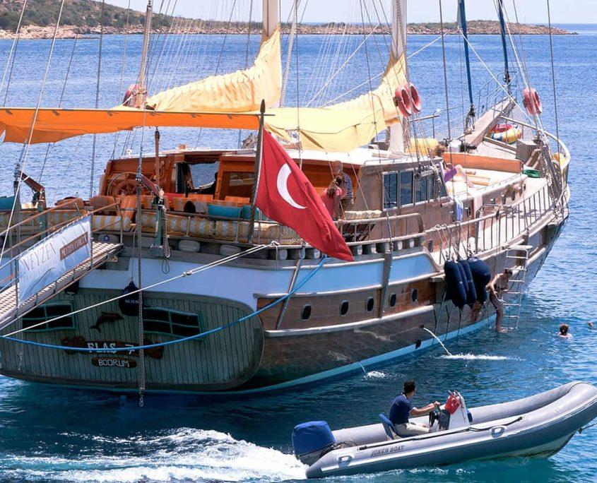FLAS VII Enjoying in the sea