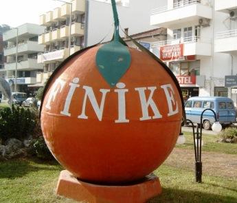 orange_finike
