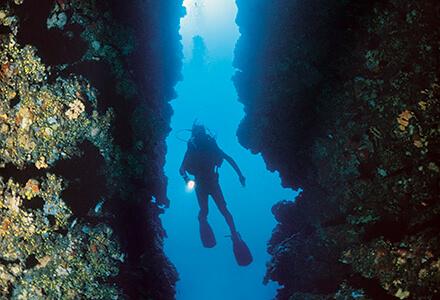 Diving, Vis Island