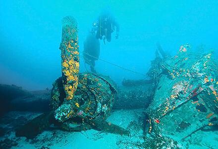 Island Vis Diving