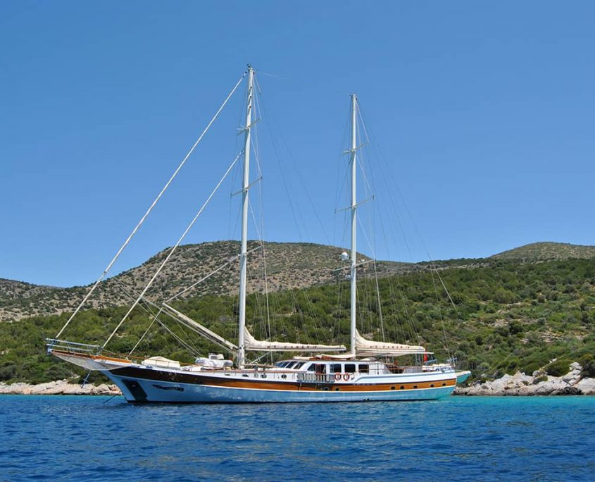 CANER 4 Anchored