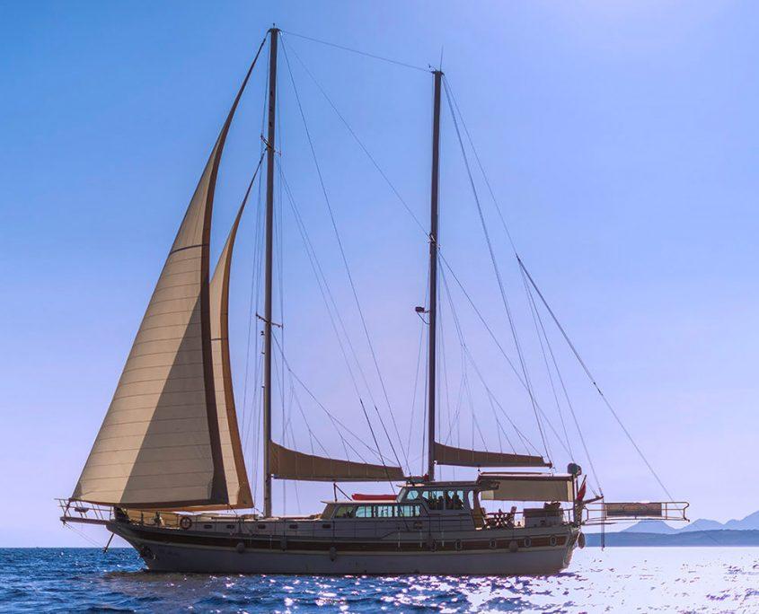ECE ARINA Sailing
