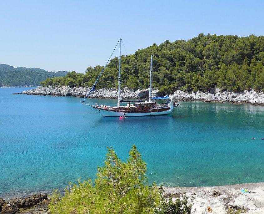 ANATOLIE In bay