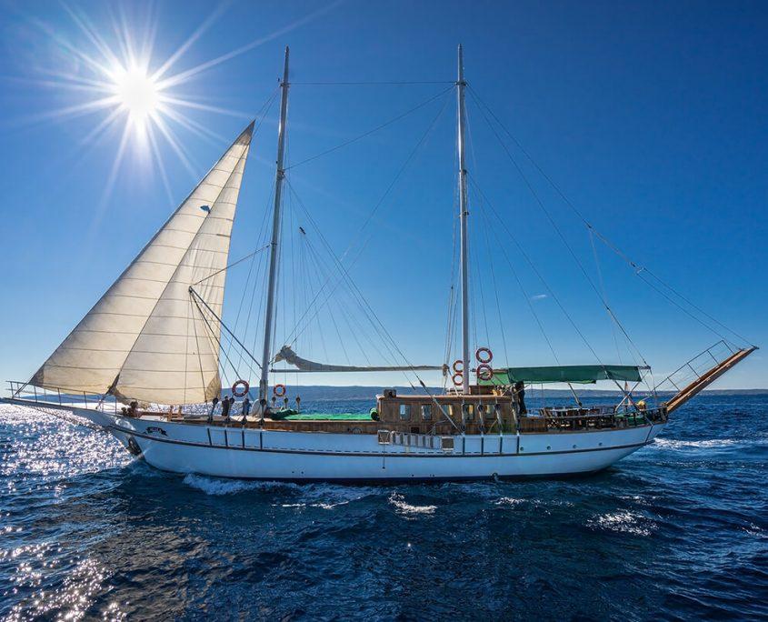 ALISA Sailing