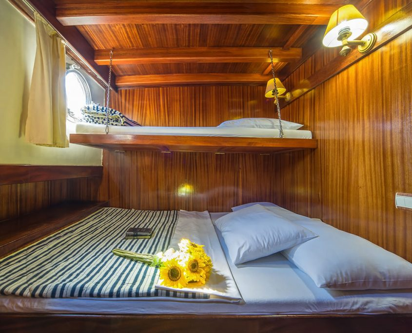 ALISA Double Cabin and Bunk Bed