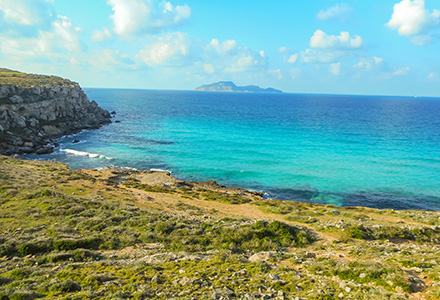 The Turquoise Waters, Favignana