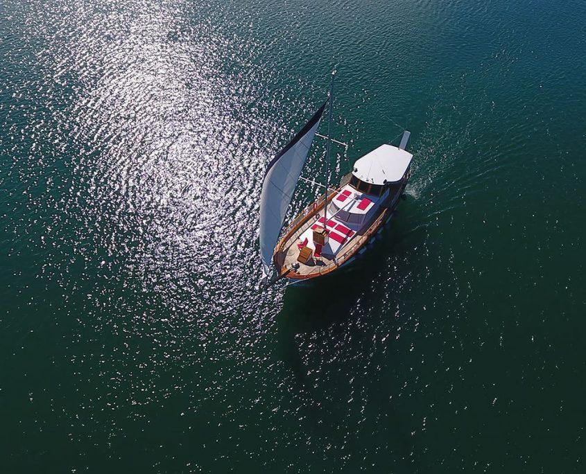 DAMA Aerial view
