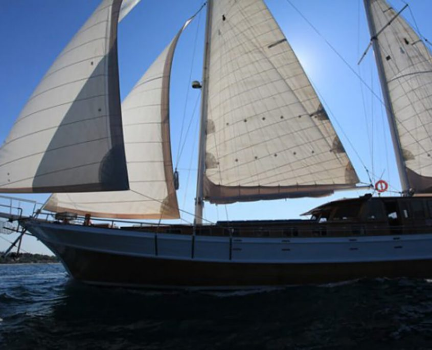 Bonaventura With Sails