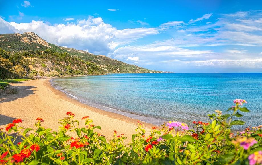 Panorama-of-Porto-Zorro-beach-against-colorful-flowers-on-Zakynthos-island-Greece