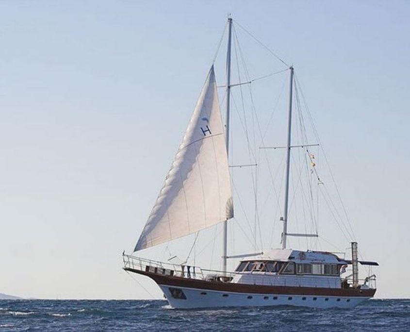 VITO Sailing