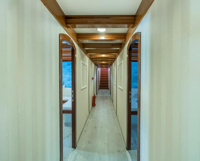 ELARA 2 Hall