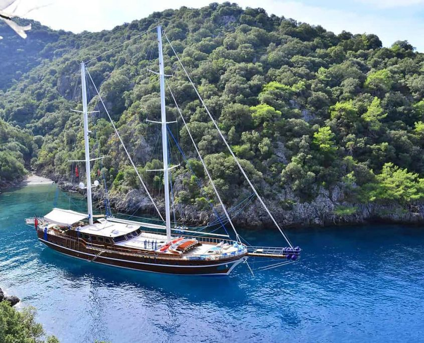 LYCIAN QUEEN Anchored
