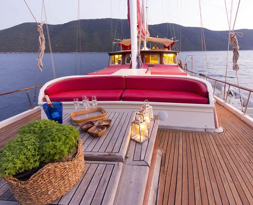 COBRA 3 Front deck