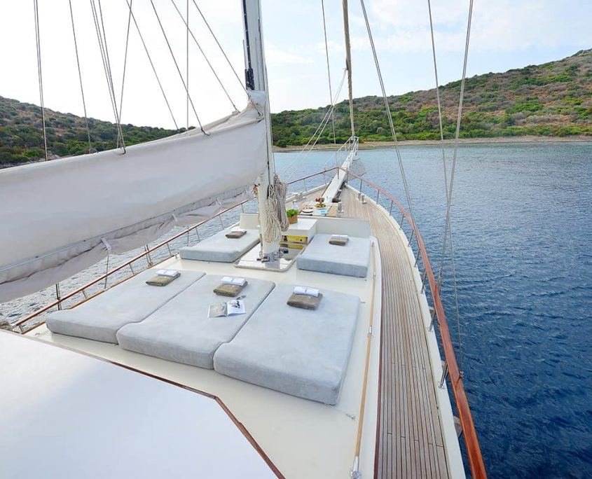 COBRA 3 Sun deck